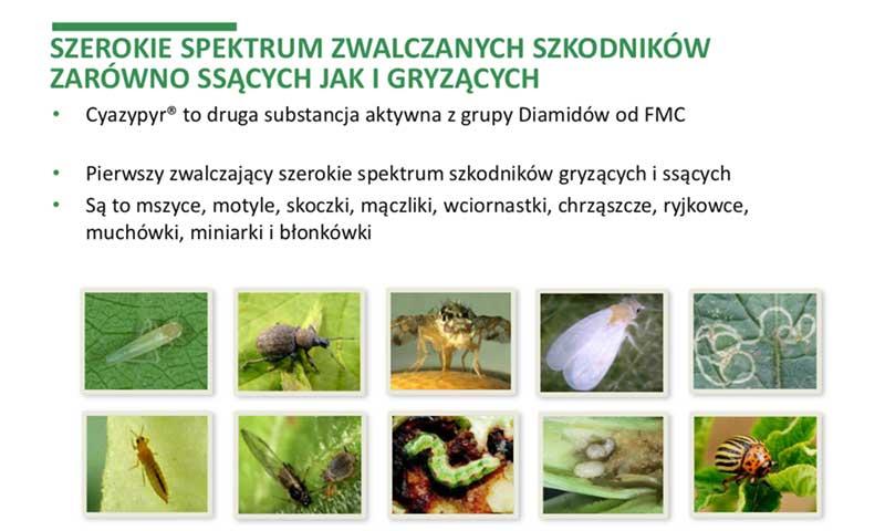 Szerokie spektrum zwalczanych szkodników - 2